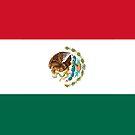 Mexico Flag by pjwuebker