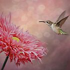Dance of the Hummingbird by swaby