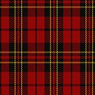 00394 Brodie Clan Tartan Fabric Print Iphone Case by Detnecs2013