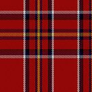 00395 Brodie (W &amp; A Smith) Tartan Fabric Print Iphone Case by Detnecs2013