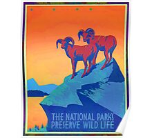 National Parks Wild Life Poster Poster