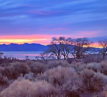 High Desert Lake Sunrise 2 by SB  Sullivan