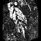 iPad case - Silver Leaf by Odille Esmonde-Morgan