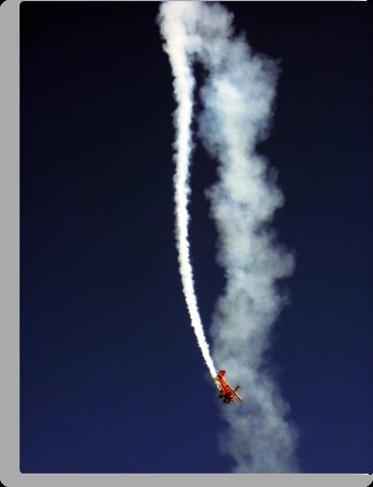 Wing Walkers by Tom Clancy