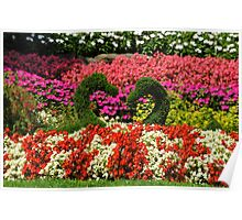 Floral Love Swans Poster
