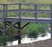 Bridge by TCbyT