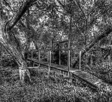 Grayscale HDR bridge by robyn70