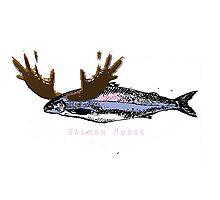 Salmon Moose Photographic Print