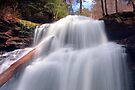 The Awesome Power of Shawnee Falls by Gene Walls