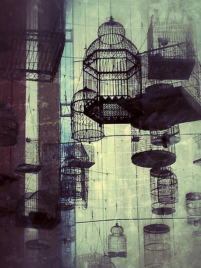Choose Your Cage Wisely by diggle