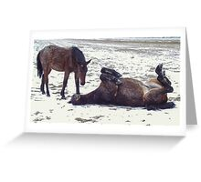 Horse Play In The Snow Greeting Card