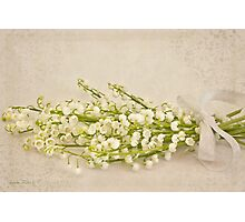 Ribboned Lily Of The Valley  Photographic Print