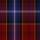 00402 Baron of Greencastle Dress #2 Tartan Fabric Print Iphone Case by Detnecs2013
