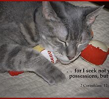 Possessions by Kenneth Hoffman