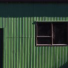 Window on a green barn  by Duncan Cunningham