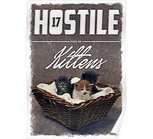 Hostile 17 Owes Me Kittens (grungy) Poster