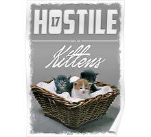 Hostile 17 Owes Me Kittens (Clean) Poster