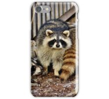 Afternoon Tea with the Raccoons iPhone Case/Skin
