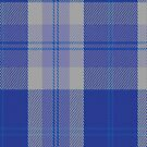 00446 Bannockbane Blue #3 Tartan Fabric Print Iphone Case by Detnecs2013