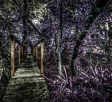 Bridge2 HDR by robyn70