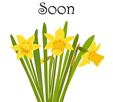 Get Well Soon / Daffodils by Jacqueline Turton