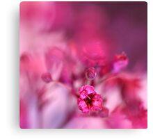 Pink Phantasy Canvas Print