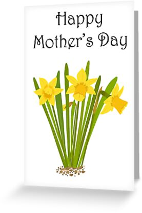 Happy Mother's Day / Daffodils by Jacqueline Turton