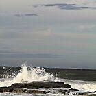 Sunlit Wave by Jenelle  Irvine