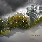 Weather by flexigav