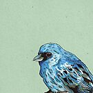 Blue Bird by Calum Margetts Illustration