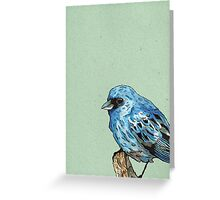 Blue Bird Greeting Card