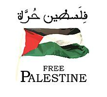 Free Palestine 2013 t shirts, stickers and cases Photographic Print