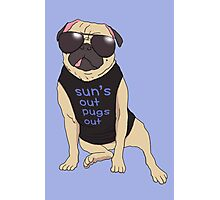 sun's out pugs out Photographic Print