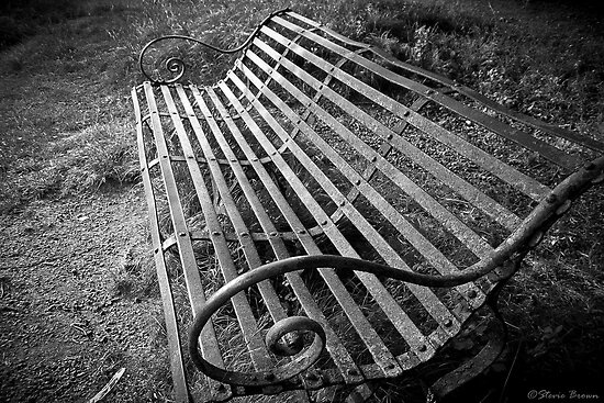 Bench by Stevie B