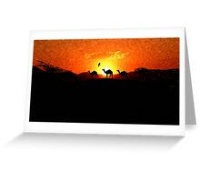Desert Sunset - Silhouette Camels Greeting Card