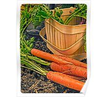 Fresh Garden Vegetables Poster