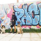Pack by BellatrixBlack