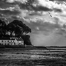 Low Tide - Lympstone by Michael Carter