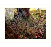 Water Wheel Web... Art Print
