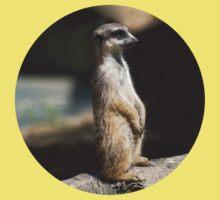 Meerkat Kids Clothes