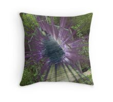anne spencer bridge lens flare Throw Pillow