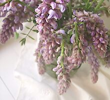 Wisteria by thesweetestdays