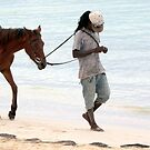 A Man and his Horse by Laurel Talabere