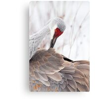 A Thing Of Beauty ~ Canvas Print