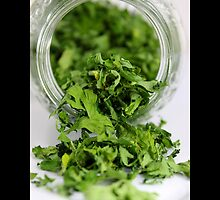 Petroselinum Crispum - Home Dried Garden Parsley Leaves In A Glass Jar by © Sophie W. Smith