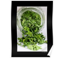 Petroselinum Crispum - Home Dried Garden Parsley Leaves In A Glass Jar Poster