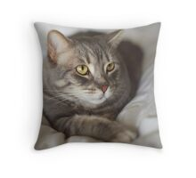 Desert Cat Throw Pillow