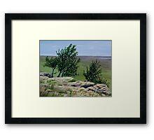 Prairie Sentinels Framed Print
