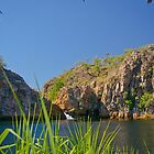 Edith Falls, Nitmiluk National Park, Northern Territory by fotosic