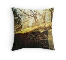 A Green Roof Throw Pillow